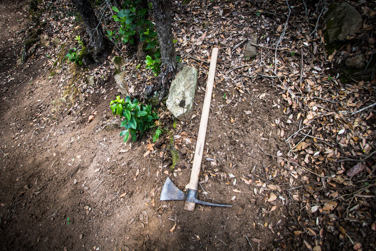Tools need to be simple and light to carry into the trail.